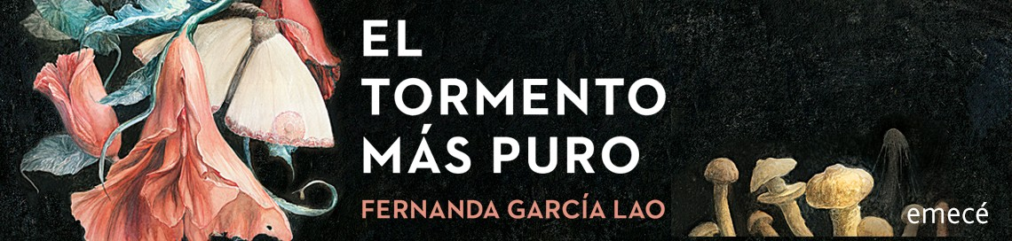 1271_1_1140x272_EL_TORMENTO_MAS_PURO.jpg
