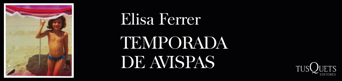 1377_1_1140x272_TEMPORADA-DE-AVISPAS.jpg